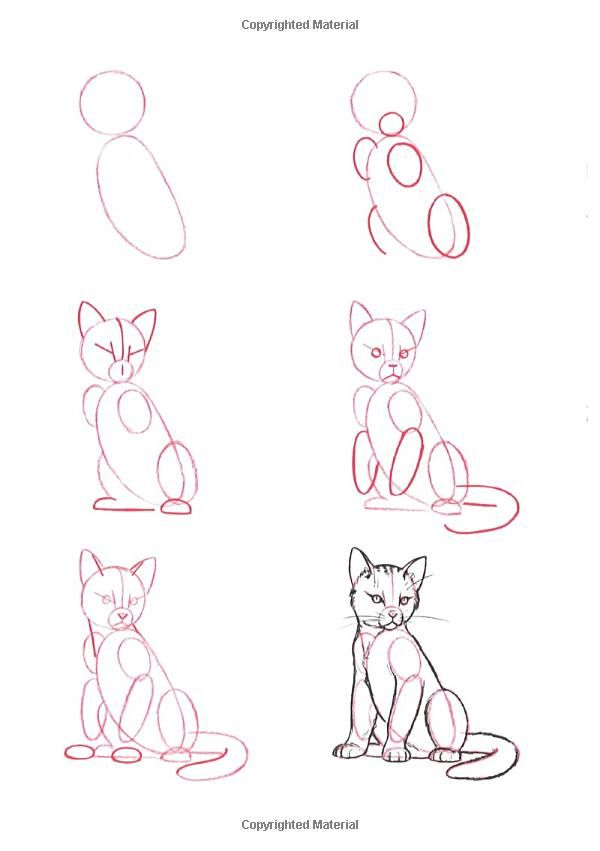 How to Draw a Cat (2)