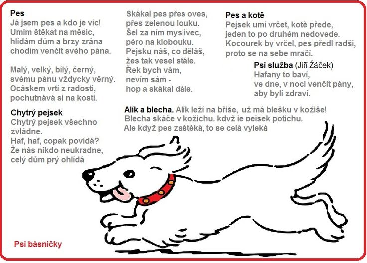 psí básničky