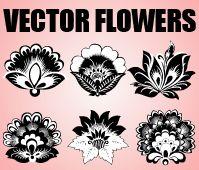Vector flower buds