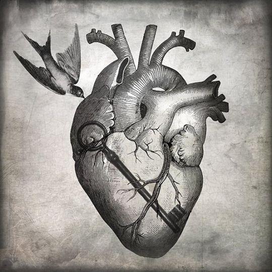 """"""" Love Is the Key """" by Christian Schloe"""