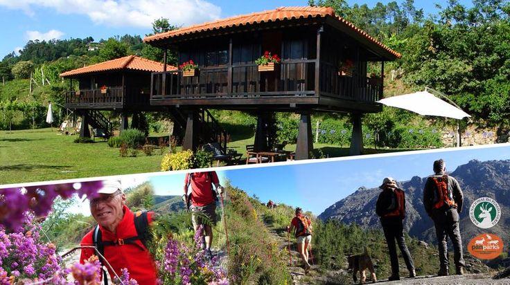 www.quintalamosa.com