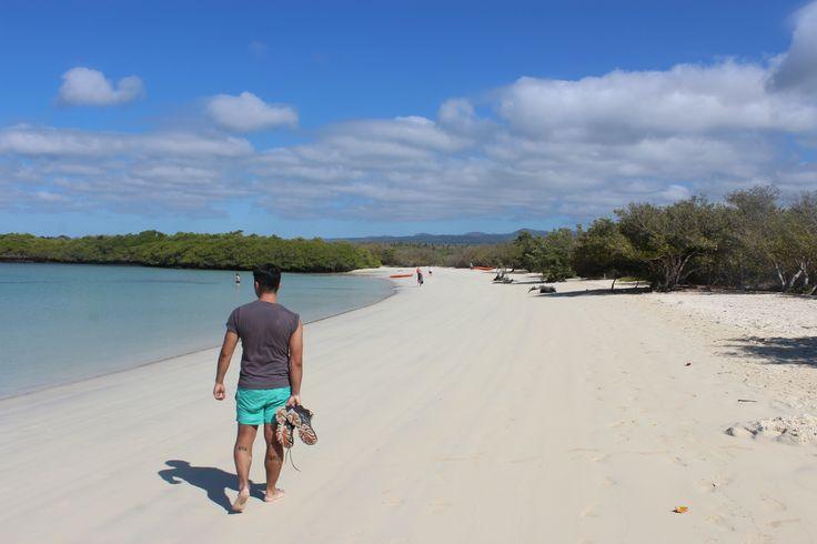 Playa Tortuga Bay, Isla Santa Cruz, Galápagos, Ecuador