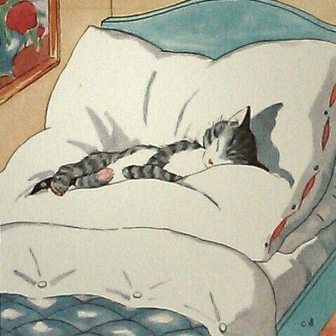 Eles amam deitar na minha cama, logo após ter arrumando para eu deitar!!! Amo…
