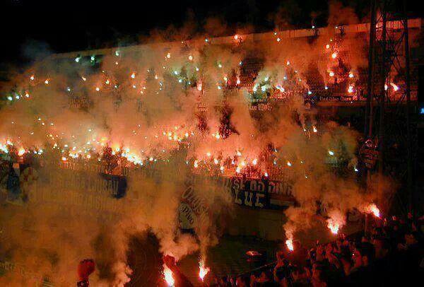 Dinamo Zagreb Croatia Fussball