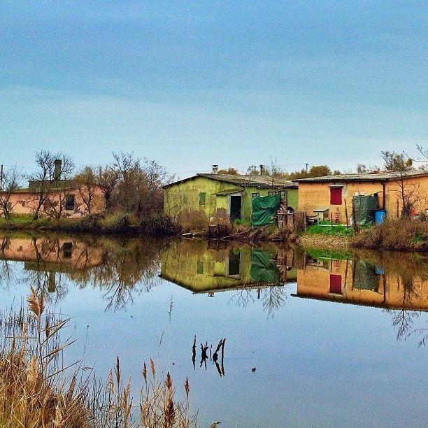 fabio33 Valle Mandriole | Un weekend in bicicletta tra i Lidi Nord di Ravenna
