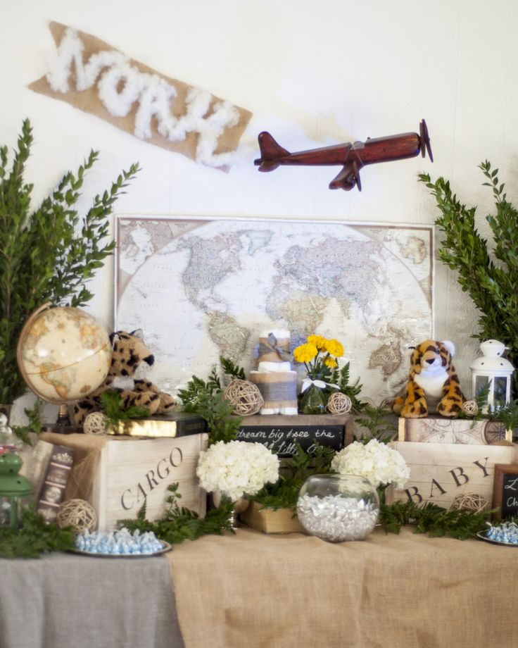 Travel Safari Baby Shower