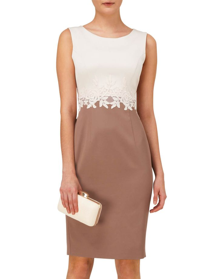 Modern Classics | Neutral Suzanna Lace Dress | Phase Eight