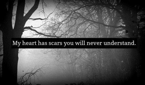 My heart has scars you will never understand.