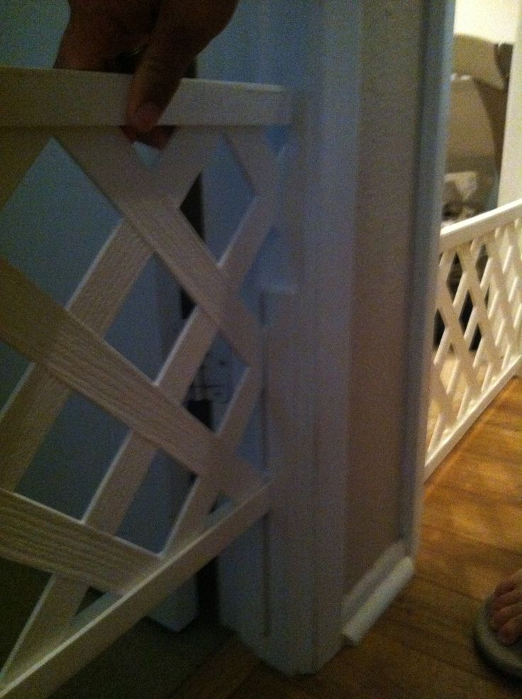 easy DIY dog gate. Lattice work and apply a piace of wood to the door so it slides up and down