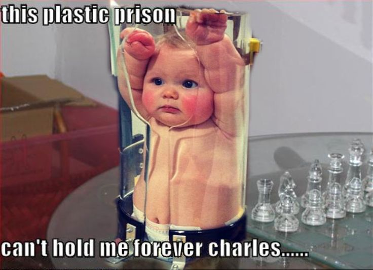 65 Best Images About Meme Machine On Pinterest Teacher