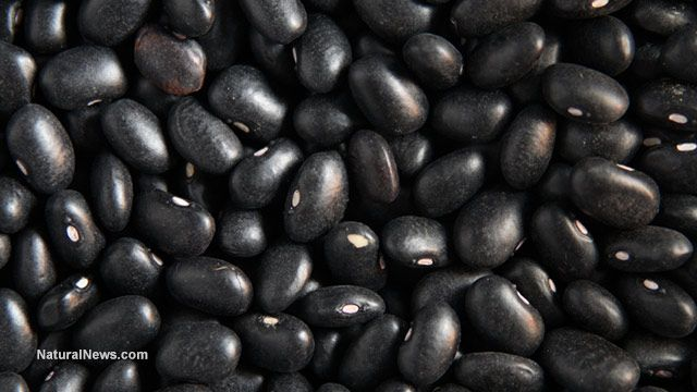 A wonderful fruit: Black beans lower blood pressure, reduce degenerative disease and much more