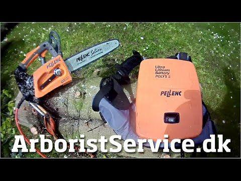 Testing Pellenc Selion Battery Powered Chainsaw - The quiet pruner - Tree climbing Arborist - YouTube