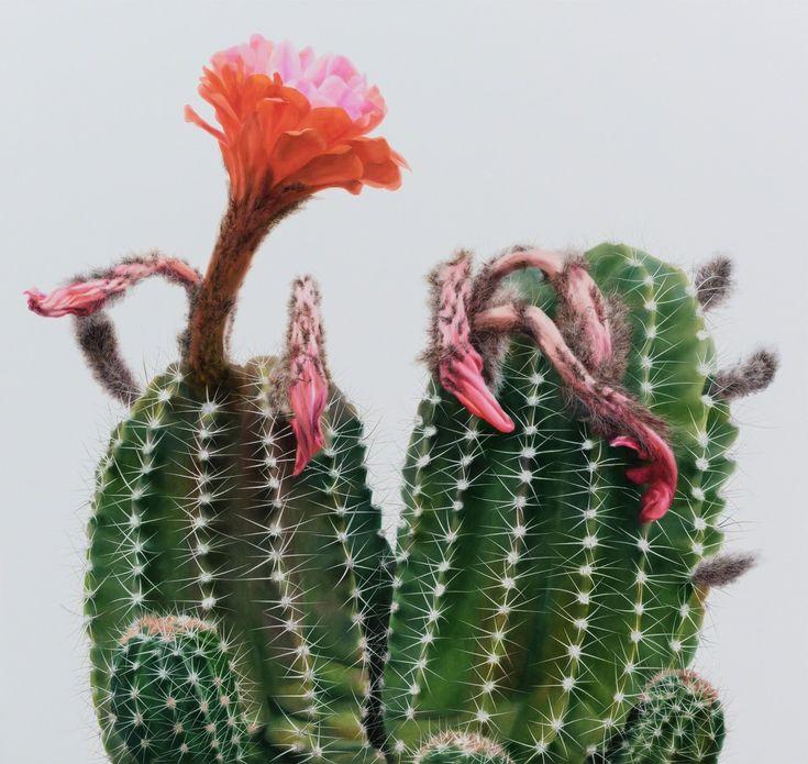 Fascinating Hyperrealistic Cactus Painting by Kwang-Ho Lee