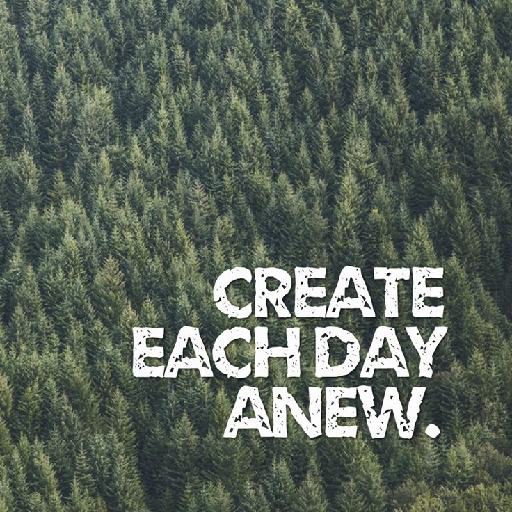 Today Quote: Create each day anew