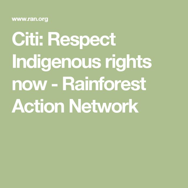 Citi: Respect Indigenous rights now - Rainforest Action Network