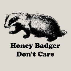 Honey Badger Don't CareYoutube Videos, Fun Ni, Quotes, Funny Shit, Make Me Laugh, Humor, Honey Badger, Honey Badges, Funniest Youtube