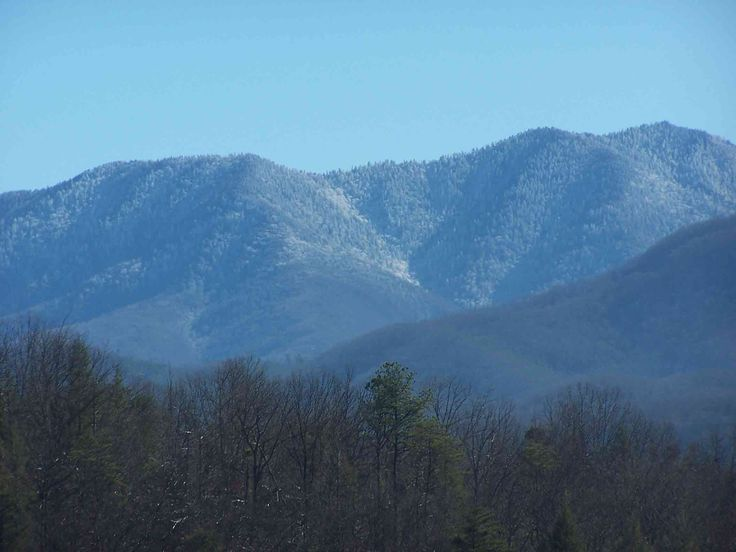 Great Smoky Mountains - typical view from a vacation cabin