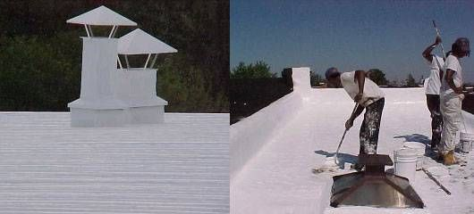 White paint: a surprising cure for global warming  DOE head Steven Chu praises the benefits of whitewashing roofs to reduce energy consumption.
