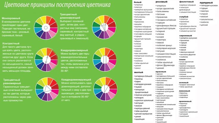 Создаем цветник: цветочная палитра на Supersadovnik.ru