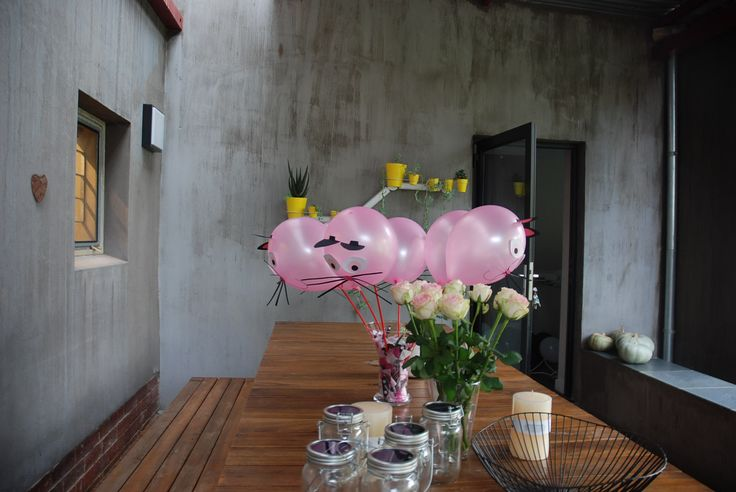 Cat party Balloons