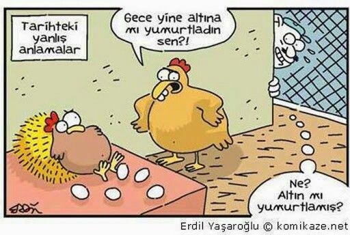 Altına yumurta:D