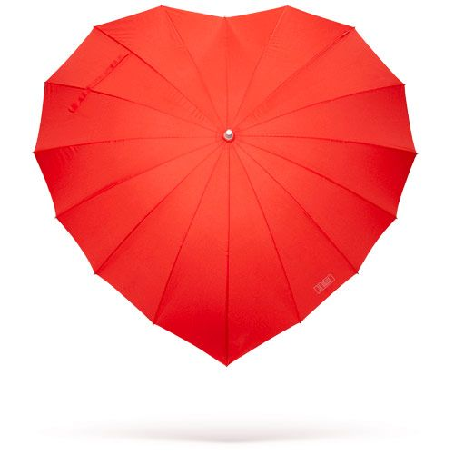 sweet umbrella-- so cute! i have lived my whole life without owning an umbrella. this one will be perfect! :)