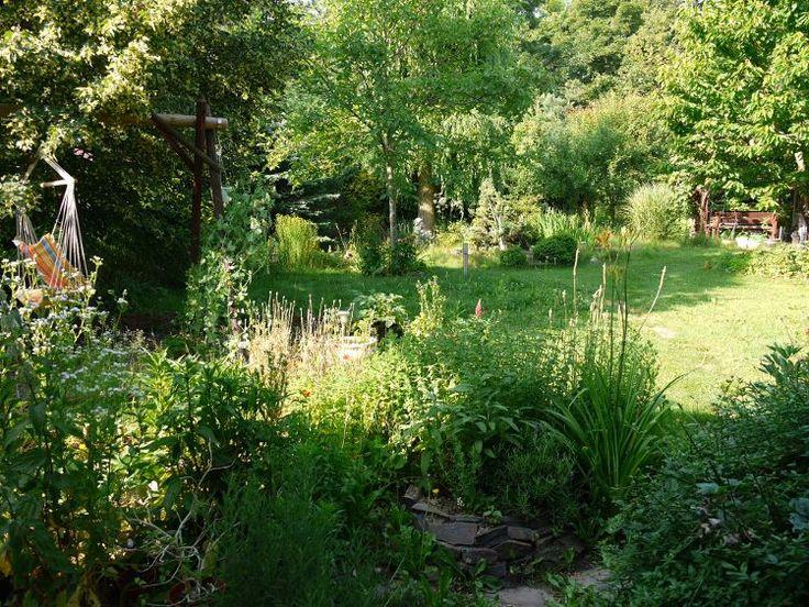Permakultúrna záhrada rodiny Sekulovcov v Ivanke pri Dunaji. Snímka: archív H.Sekulovej