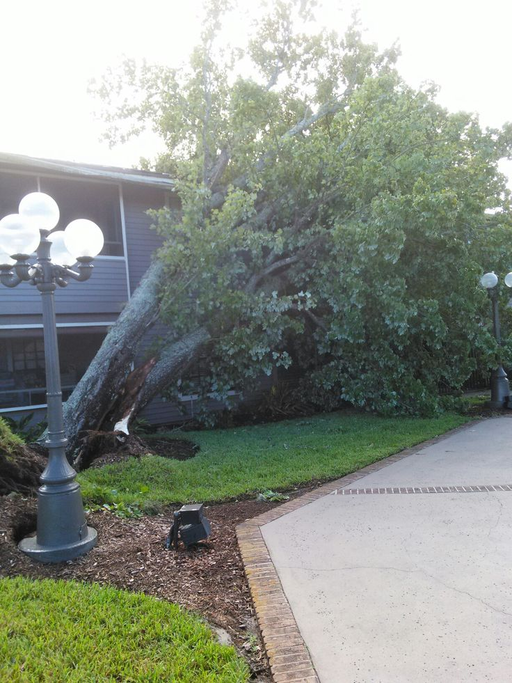 Damage in Jacksonville, Fl.
