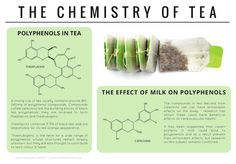 Chemistry of Tea