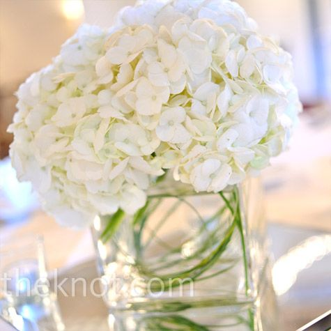 This is perfect.  Love this.  hydrangea centerpieces   White Hydrangea Centerpieces