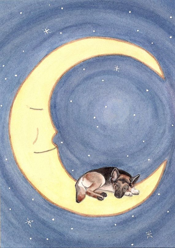 German shepherd takes a nap on the moon / Lynch by watercolorqueen