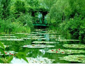 Mone's Garden in Kitagawamura 池の周囲には「藤」や「柳」「桜」といった日本でもなじみ深い樹木を中心に、赤や黄色や青といった色鮮やかな草花たちが配されています。太鼓橋とバラアーチといった日本文化と西欧文化の融合は、まさに印象派クロード・モネならではの感性の庭ともいえます。