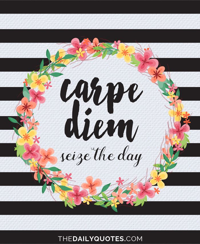 Carpe diem. Seize the day. thedailyquotes.com