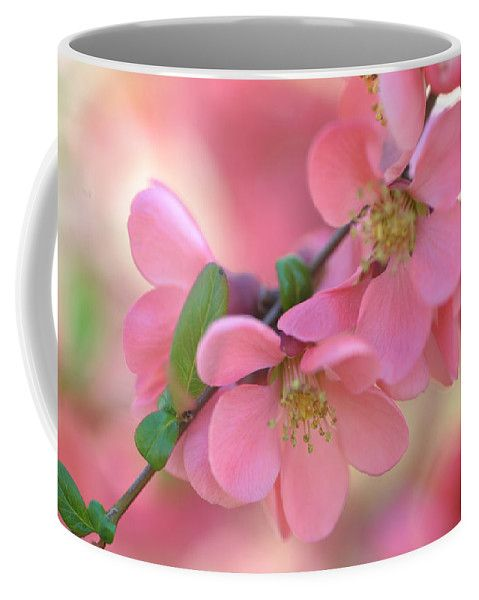 Pink Spring Marvels Coffee Mug by Jenny Rainbow.  Small (11 oz.)