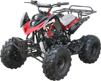 49cc scooters, 50cc scooters, 150cc scooters to 400cc Gas Scooters for sale , Street Legal Mopeds, Motorcycles, Go Karts, 4 Wheelers, Utility Vehicles, - CMS 125cc Stinger Deluxe - Youth ATV w/ Remote Shut Off Safety - FREE SHIPPING ( IA - 6488 )