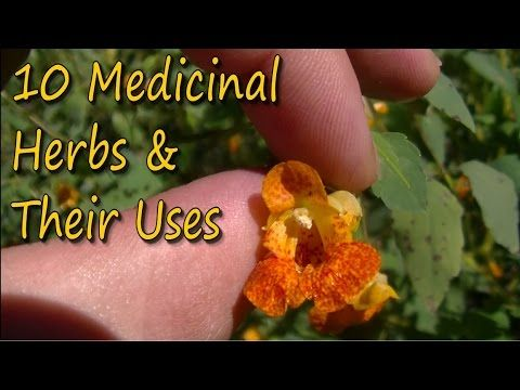 10 Medicinal Plants & Their Uses -Published on Oct 14, 2016.  Hey guys in this video we go over ten different medicinal plants and their uses, as well as discussing what kind of habitat these plants grow in. Each one of these herbs has a host of medicinal uses in herbalism from coughs, to poison ivy, and more. Plants like Boneset, Goldenrod, Blue Lettuce, Blue Lobelia, Jewlelweed and more are discussed in this video.