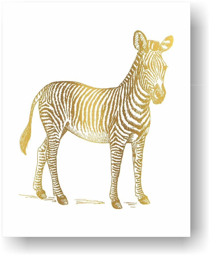 Zebra African Safari Hunting Lodge Decor Real Gold Foil Zoo Animal Art Unframed Paper Print. Zebra Art Print - Real Gold Foil. This Zebra print makes a great gift for the wildlife lover. Hang it in your living room or safari nursery. Frame and Mat Not Included. Unframed Print / Not Canvas Since this is foiled by hand tiny black flecks may be present in the gold foil 5x7 size has a small border for easy framing with a mat 8X10 artwork is printed on a 8.5x11 inch sheet for easy framing with…