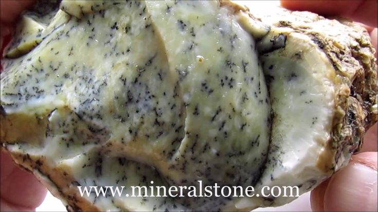Dendritic Rough Opal 545 Gr