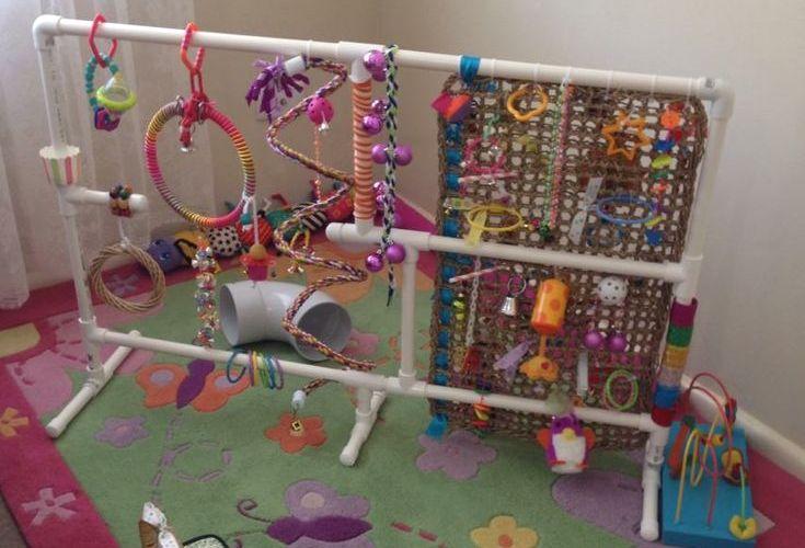 PVC Sugar Glider Playground - PetDIYs.com
