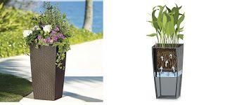 Agora já se pode esquecer de regar as suas plantas
