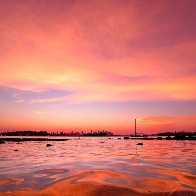 Vaucluse in Sydney's east, home to the beautiful and secluded Milk Beach and Shark Beach, offering protected swimming conditions and fantastic views of the skyline. Come and enjoy Sydney's iconic summer!