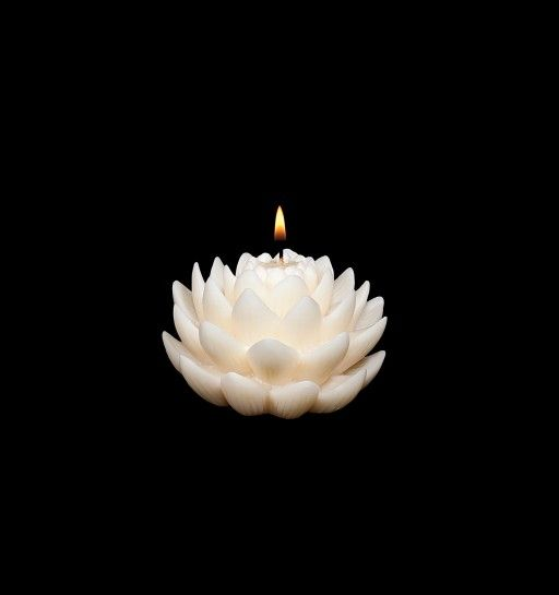 bloom floating candles  they look magical in a bowl, vase or pool  www.volcanicacandles.com