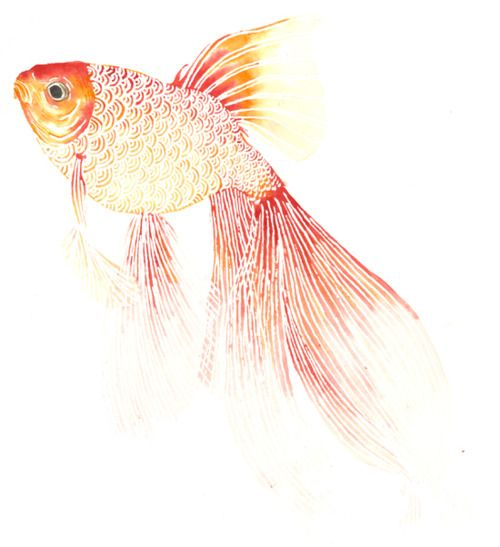 Would love to take up watercolor painting...