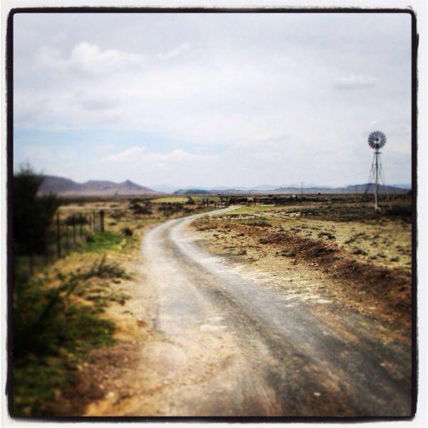 Plaaspad - Karoo