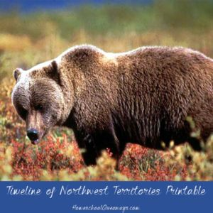 FREE Timeline of Northwest Territories History. Northwest Territories lies in the far north of the Dominion of Canada and includes islands in the Arctic Ocean. Dive into the history of the Northwest Territories with this free 7-page Canadian history printable. Create a map of the province, make a timeline of its history, and explore more of the province's past with writing prompts. - WriteBonnieRose.com