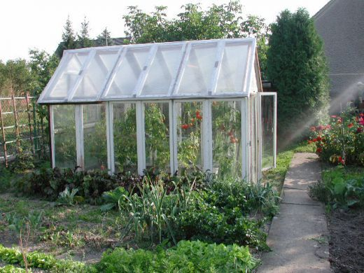 Four Tips for the Greenhouse Gardener Beginner on greenhouse interior