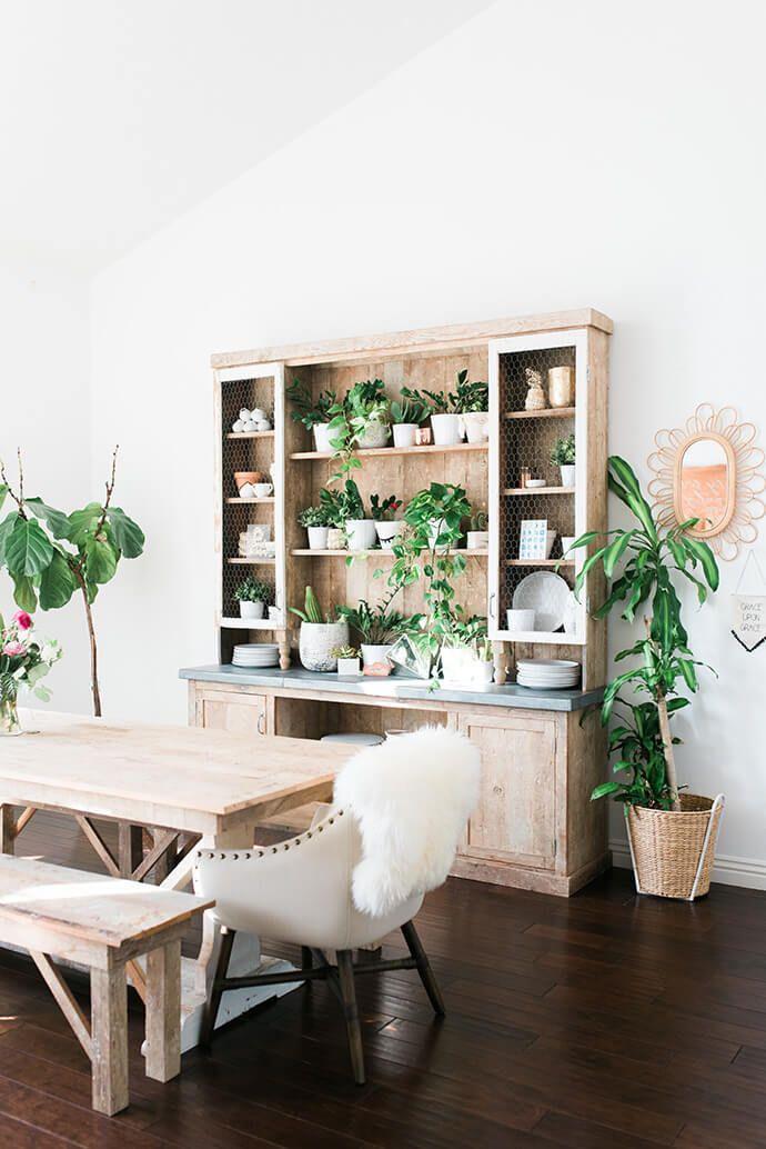 Sideboard im Esszimmer um Vintage Look mit vielen Pflanzen