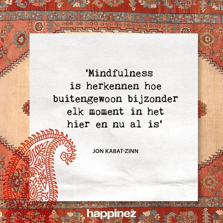 Mindfullness is herkennen hoe buitengewoon bijzonder elk moment in het hier en nu al is