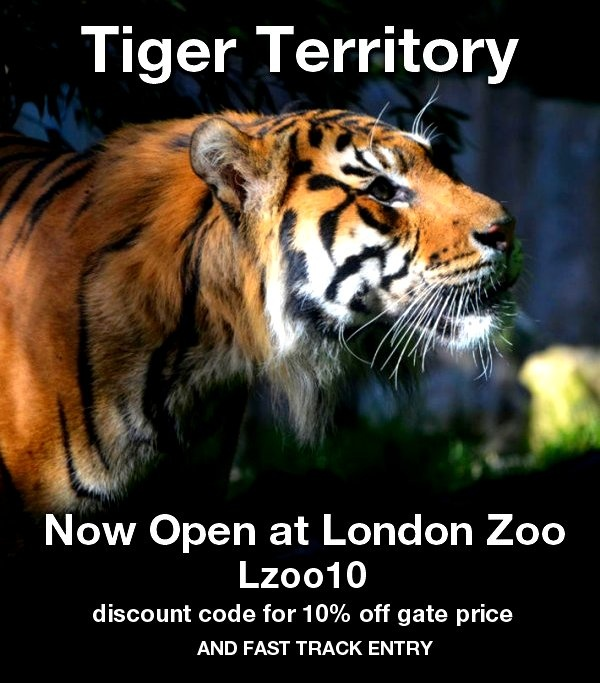 TIGER TERRITORY NOW OPEN AT LONDON ZOO - 10% discount code from 365 Tickets - Outlook Web Access Light