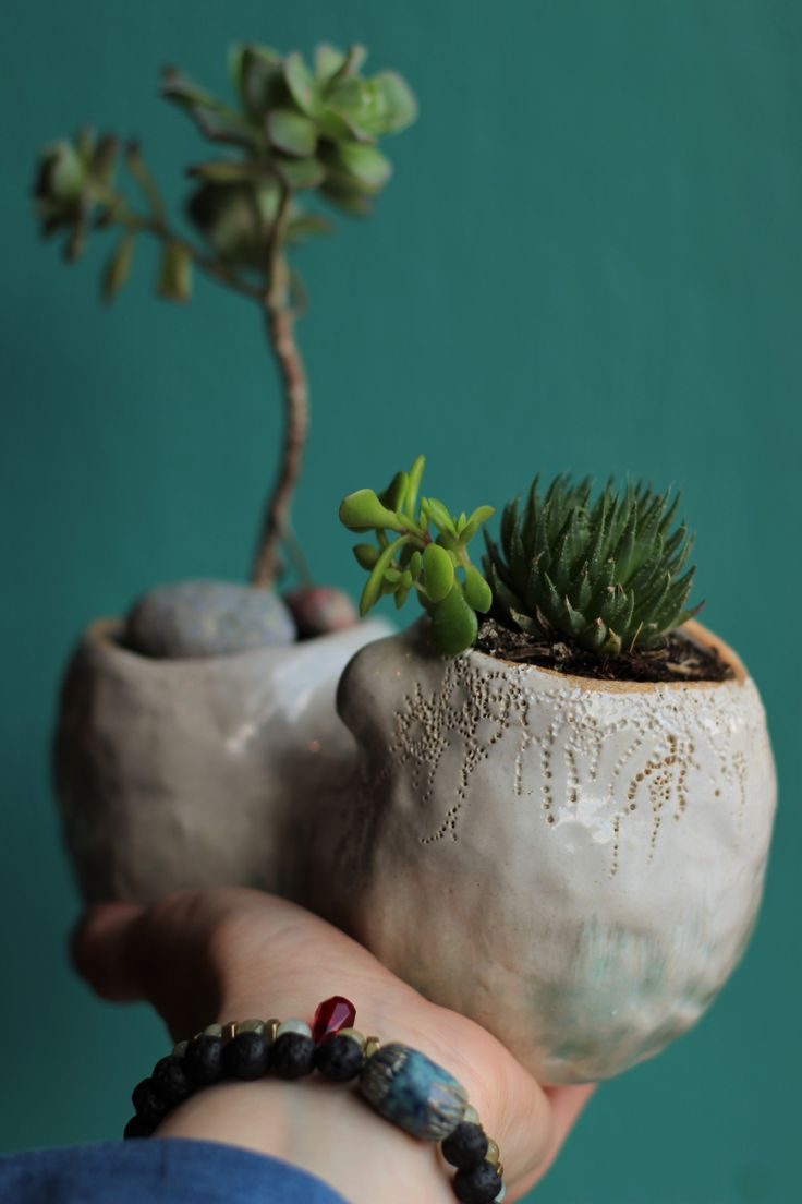 ORGANIKUS by NomenOmenStudio.com ceramic succulent planter